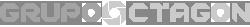 Grupo Octagon - Desenvolvimento Web
